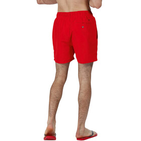 Regatta Mawson Zwemshorts Heren, pepper
